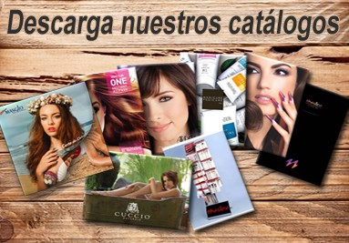 Descargar catálogos